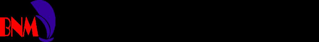 Batu Licin Nusantara Maritim